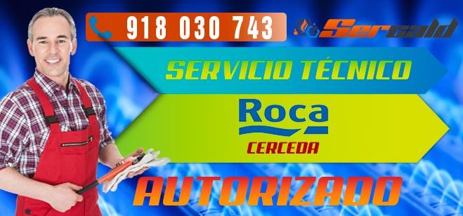 Servicio Tecnico Roca Cerceda