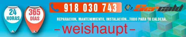 reparaciÓn de calderas y quemadores Weishaupt en Madrid